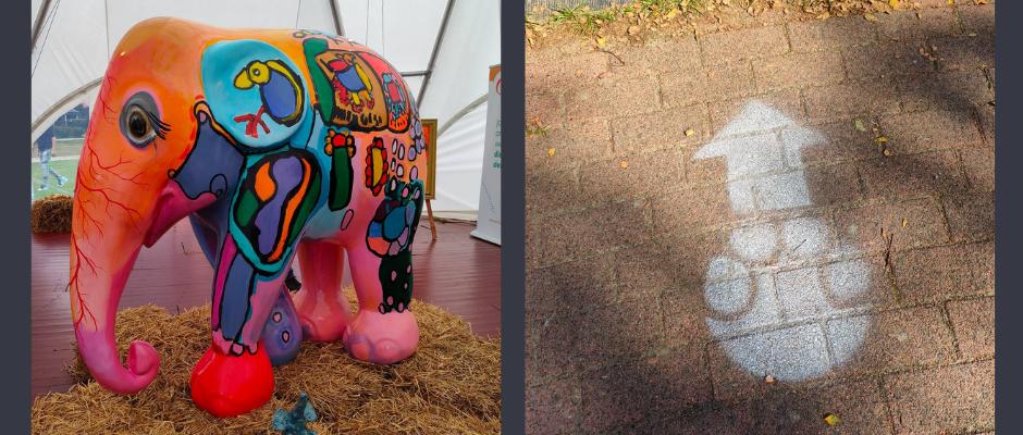 Beschilderde olifant onthuld